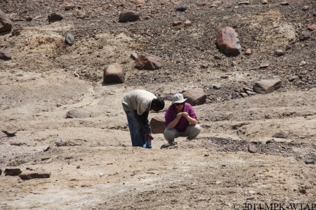2014_hilary and sammy identify stone tools
