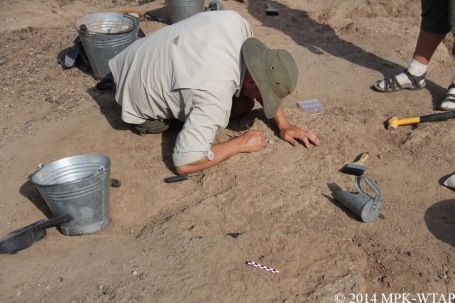 2014_jason excavating fossil bone specimen at LOM3