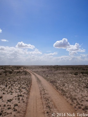 2014_Turkana desert tracks