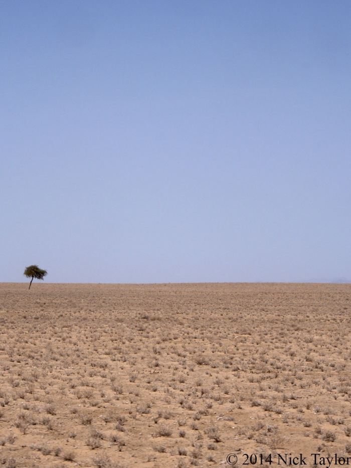 2014_Turkana landscape