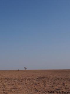 2015_A Turkana lanscape