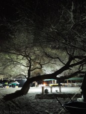 2015_The WTAP camp by night