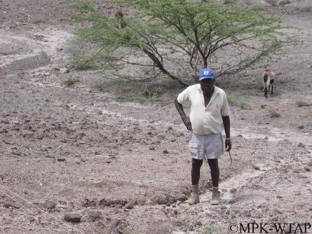Kamoya Kimeu surveying