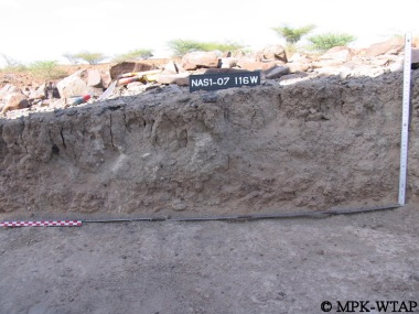 Nasura 1 trench section - in shadow!