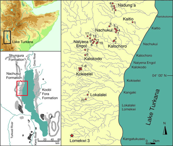 Map of Nachukui Formation sediments in geographical context