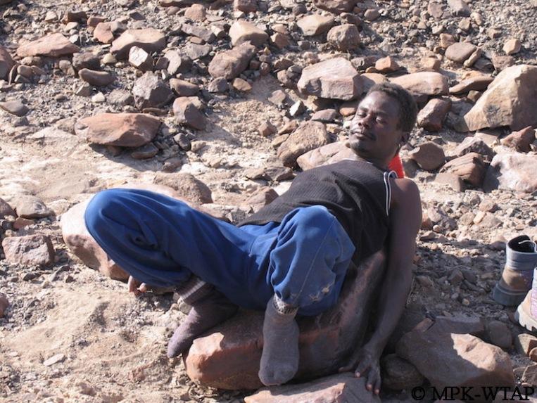 Sammy taking a break on a rock!