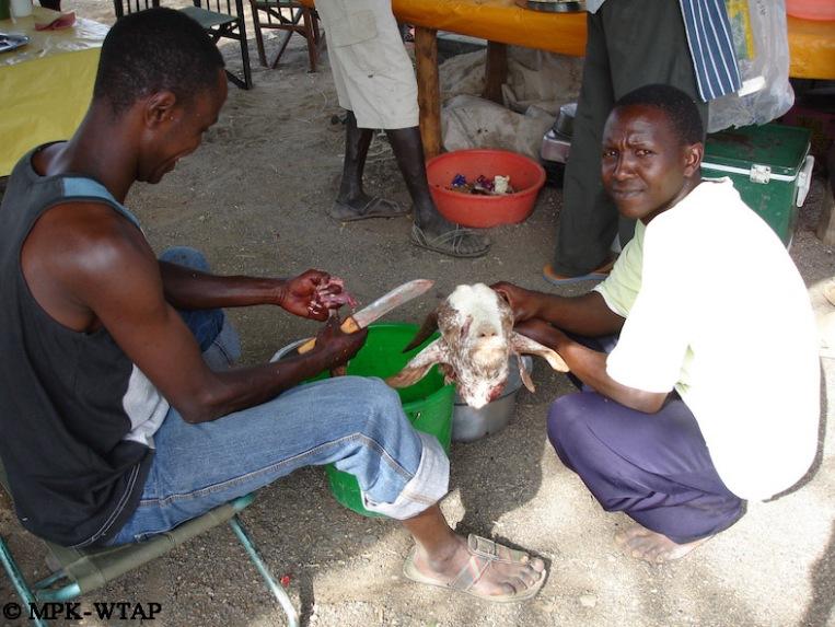 Fresh goat for dinner!