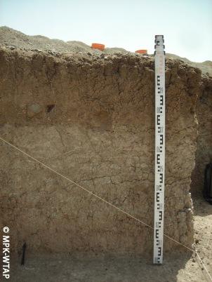 Nasura 1 trench section
