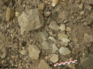 Stone core and associated flakes found on the ground surface