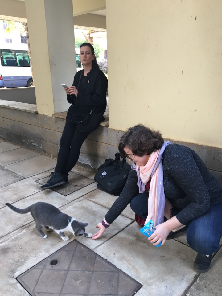 WTAP student member Hilary befriends cats in Nairobi