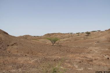 2012_A typical Turkana landscape