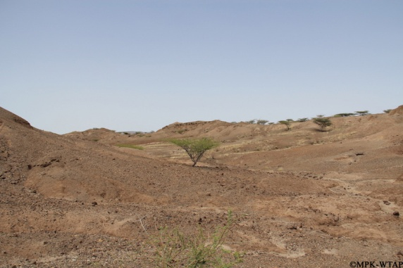 2012_A typical Turkana landscape