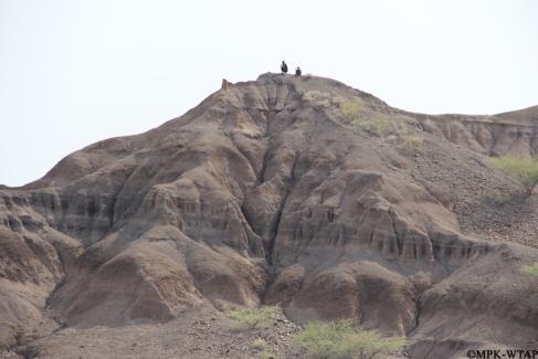 2012_Local Turkanas watching the WTAP team work