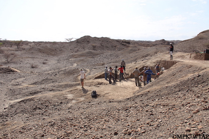 2015_Excavation of Lomekwi 3