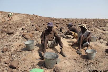 2015_The start of the excavation of Nasura 3