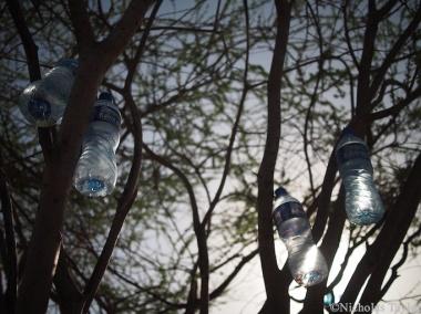 2016_A waterbottle Christmas tree, Turkana style