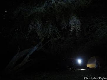 2016_Camp at night