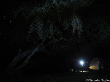 2016_Camp at night