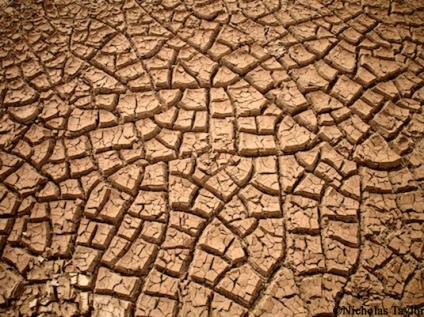 2016_Cracked mud