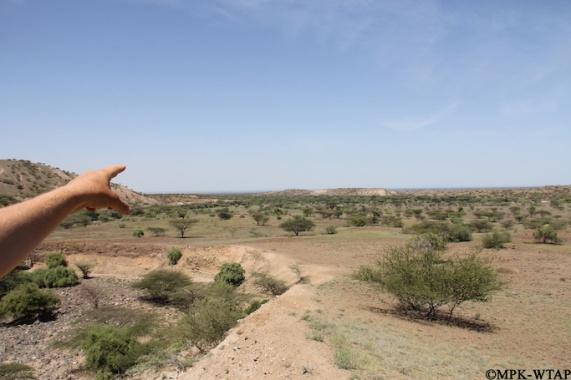 2016_Green Turkana!