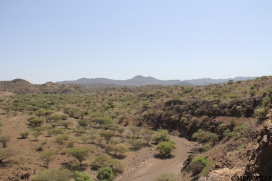 2016_Green Turkana_2