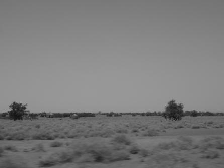 A typical Turkana landscape