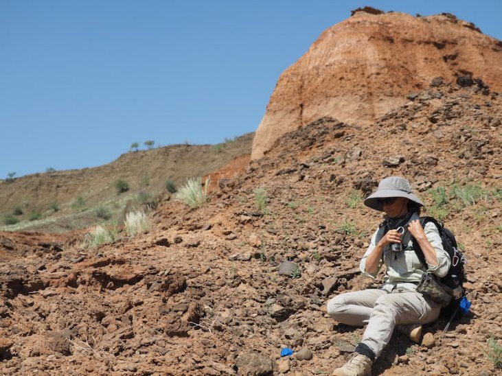 Examining lithics in the field