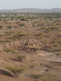 The scale of Turkana