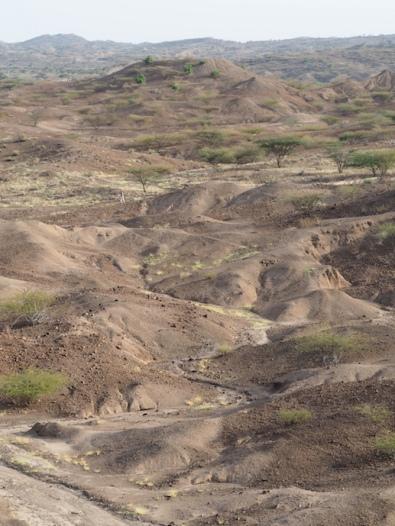 The zig-zag of a lagga through sediments near Lomekwi 3, with sandrine in the distance
