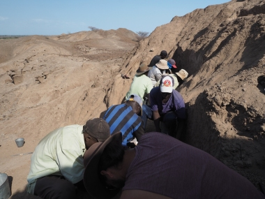 Busy times at the excavation