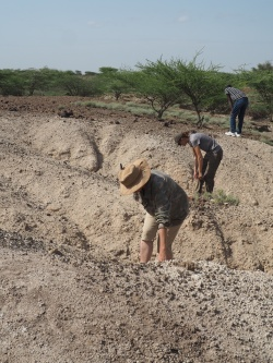 On survey for lithics