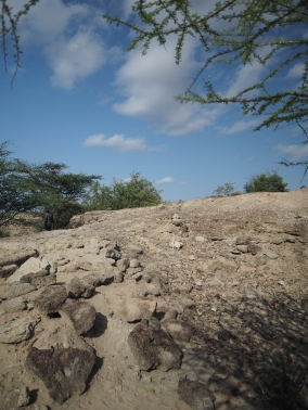 A new Acheulean site discovered at Nadung'a