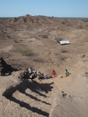 Steps cut into the hill to access the excavation