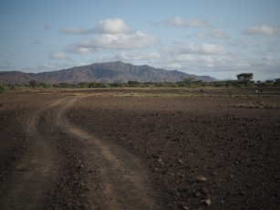 Looking north towards the Acheulean sites of the Nadung'a Site Complex