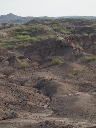 A landscape view of the work